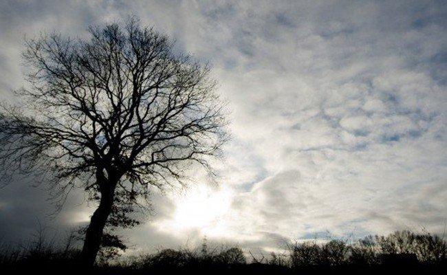 Die Woche bringt ein Wechselspiel aus Sonne, Wolken und Regen.
