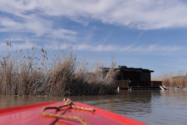 Die Suche nach weiteren Leichenteilen im Neusiedler See wird fortgesetzt.