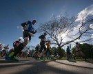 Vienna City Marathon: Große Belastung für Allergiker