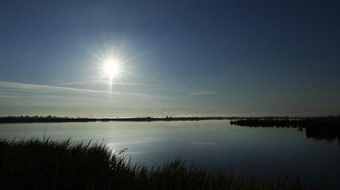 Frauentorso in Neusiedler See: Weitere Leichenteile entdeckt