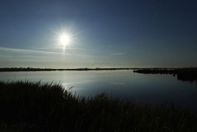 Erst wurde der Torso einer Frau im Neusiedler See gefunden.