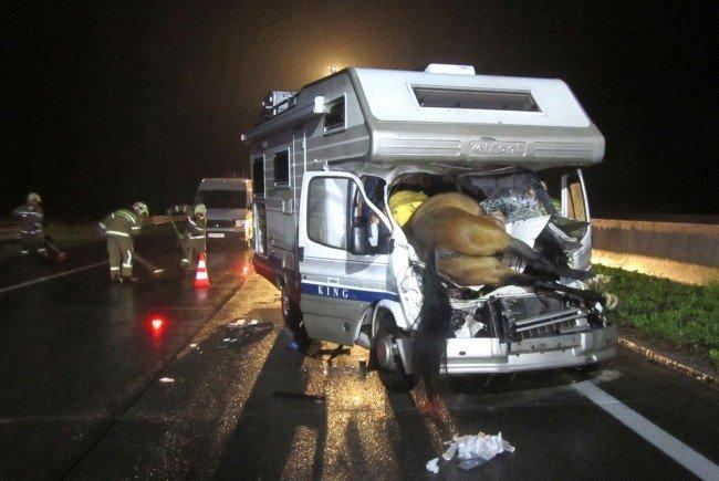 Folgenschwere Kollision: Urlauber fährt Pferd auf Autobahn tot