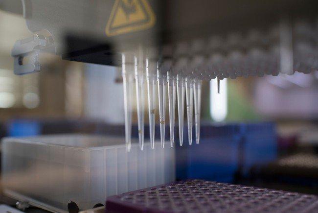 Wiener Forscher gehen der Entstehung von Krebszellen genauer auf die Spur.