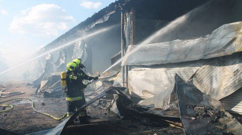 40.000 Küken bei Brand verendet