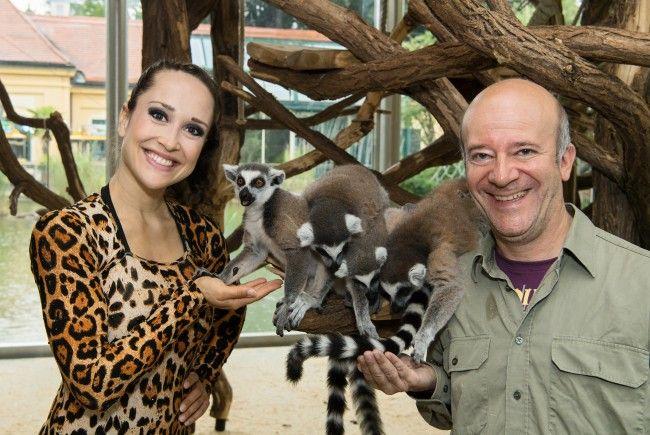 Artistin Maria Gschwandtner im Leopardendress vor den Kattas - Angst hatten diese zum Glück keine.