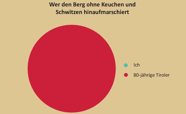 In zahlreichen lustigen Grafiken wird Österreich beschrieben.