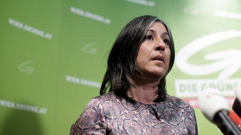 FPÖ will nächste Woche Antrag gegen Wiener Cityaut einbringen